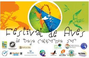 invitacion festival aves