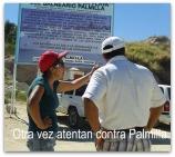 P PALMILLA1
