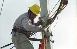CFE electricidad 38382
