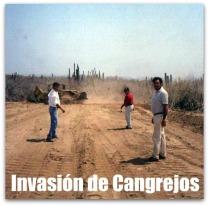 Foto histórica de Narciso Agúndez y su compadre César Uzcanga cuando invadieron Cangrejos, en Cabo San Lucas.