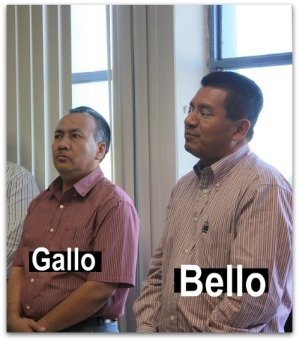 5 bello sosa magistrado gallo