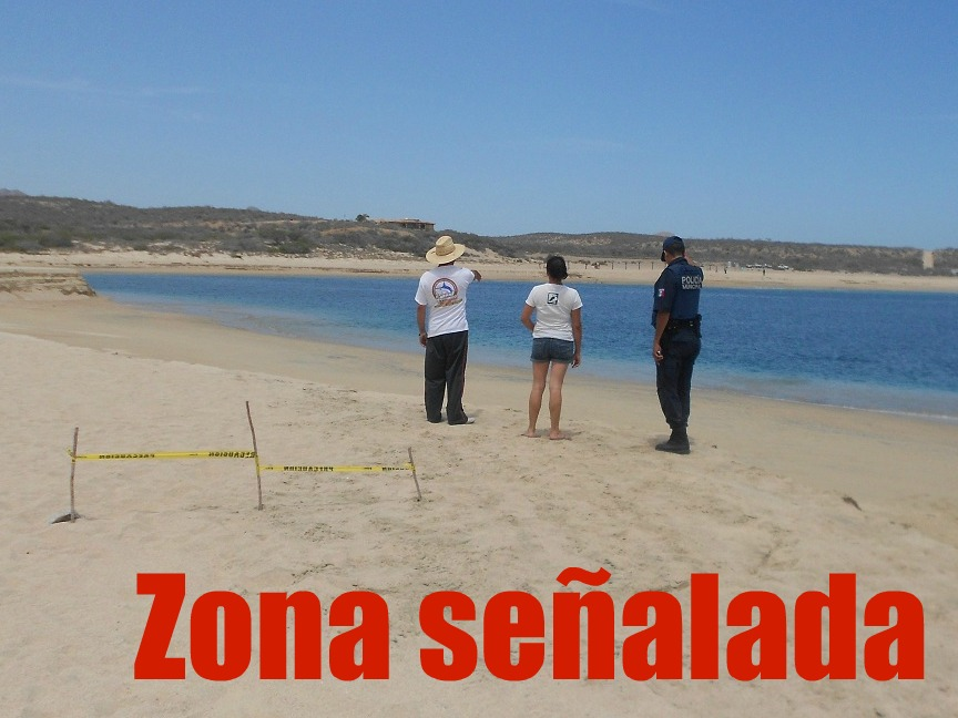 Se hunde playa en Baja California Sur Acordonada