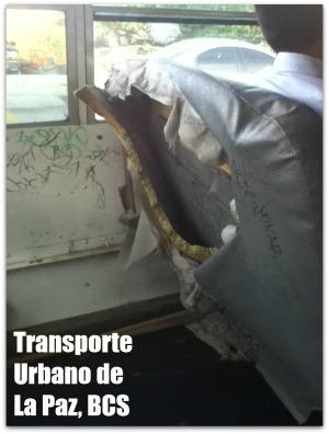 3 - 1 transporte urbano de la paz