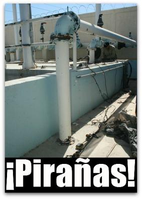 2 - 1 agua potable cabo san lucas cableado