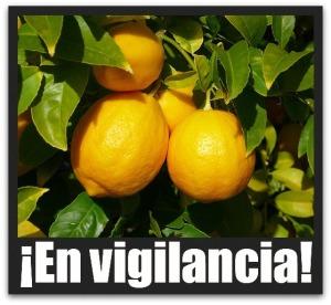 2 - 1 limones