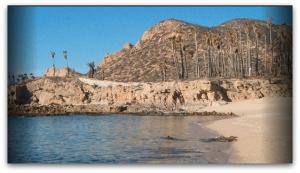 Playa Chileno - Foto de Semarnat.