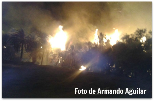 2 - 1 reportan incendio