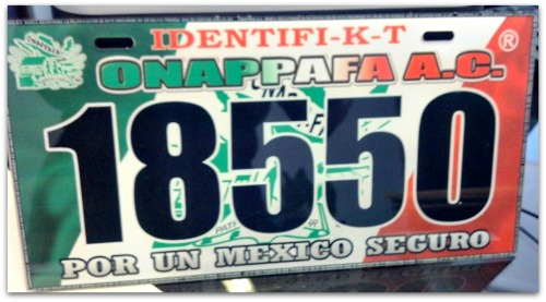 2 - 1 onappafa placa para automovil