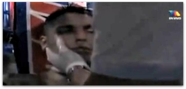 2 - 1 boxeador leal