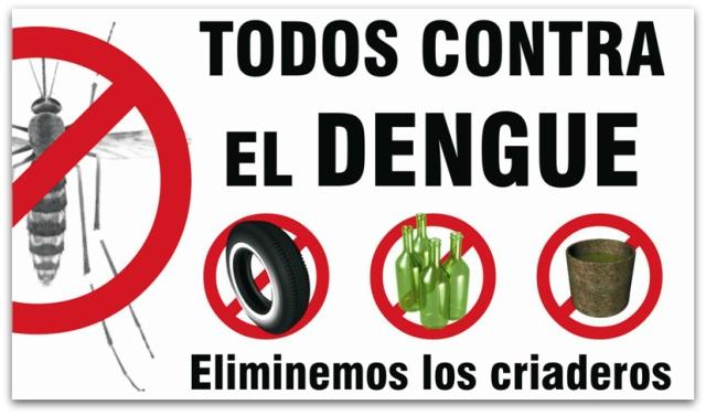 2 - 1 dengue zancudo 5265