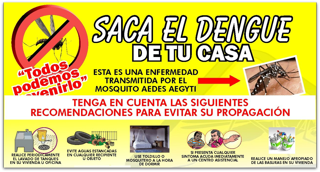 Zancudo Del Dengue