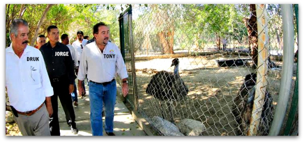 2 - 1 zoologico de santiago ok