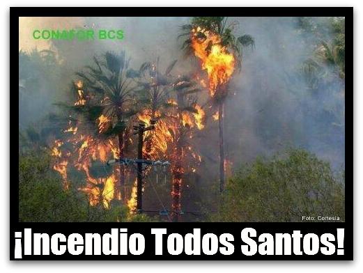 2 - 1 BOMBEROS DE LA PAZ INCENDIO TODOS SANTOS