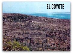 2 - 1 mare nostrum predio el coyote