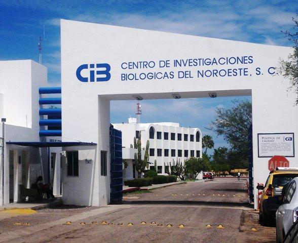 Resultado de imagen para el Centro de Investigaciones Biológicas del Noroeste (CIBNOR)