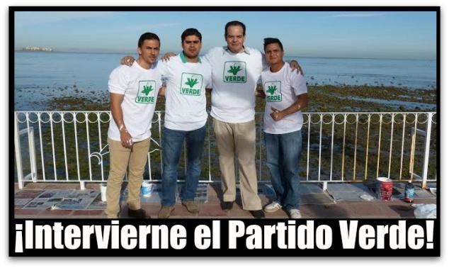 PARTIDO VERDE MALECON PACEÑO