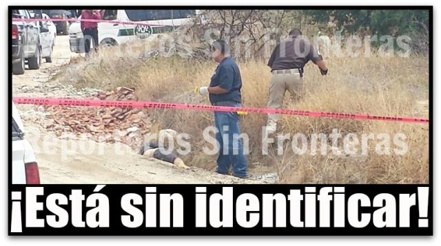 2 MUERTO ARROYO EL TULE