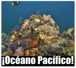 1 a especie oceano pacifico mar