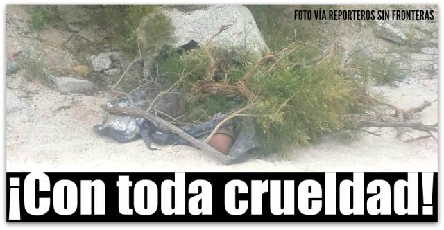 0 a a cadaver en la playa el tule