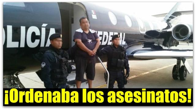 EL BURRO LOS CABOS BCS