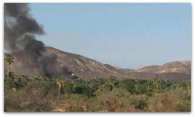 ¡Incendio en Palmar de Santa Rosa de San José del Cabo! - Colectivo Pericu