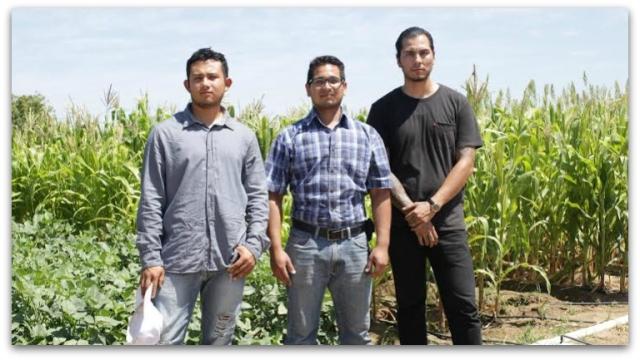 0 a cultivo organicos de la uabcs