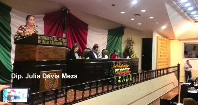 0-a-a-diputada-julia-davis-meza