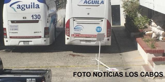 0-a-a-a-a-autobuses-aguila